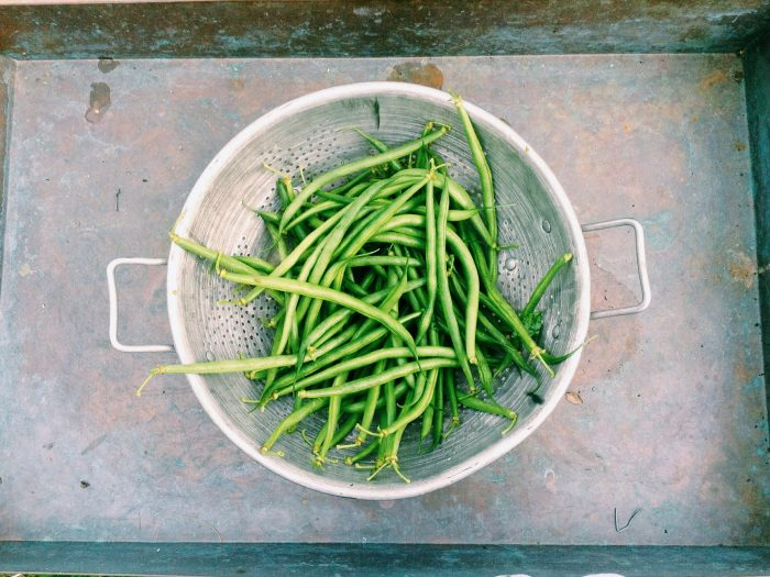 Mashed of fresh green beans